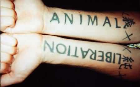 Animal Liberation - Forearms
